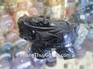 Rùa đầu rồng hắc ngà HM079