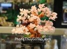 Cây tài lộc thạch anh hồng kiểu nhật nhỏ KC027