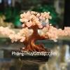 Cây tài lộc thạch anh hồng mini KC050