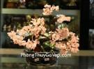 Cây tài lộc gốc đẹp thạch anh hồng trung KC078