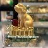Chó vàng ôm châu đỏ H410G