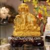 Chó vàng trên bao tải vàng C009A