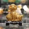 Chó vàng ôm bọc vàng C030A
