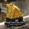 Cóc vàng xoay C062A