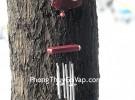 Chuông gió 6 ống – 2 gỗ dưới – CG1235