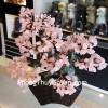 Cây thạch anh hồng thân bonsai chậu kiểu nhật mới (Phước) KC120