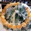 Chuỗi thạch anh tóc vàng A+++++ S6745-S5-3498