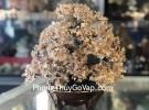 Cây thạch anh vàng lớn hạt nhỏ thế kim tự tháp đế bầu tròn KC103