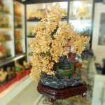 Cay Thach Anh Vang 01 150x150 Cây đá Thạch Anh Vàng K163