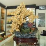 Cay Thach Anh Vang 150x150 Cây đá Thạch Anh Vàng K163