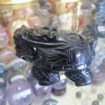 HM079 150x150 Rùa đầu rồng hắc ngà HM079