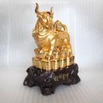 H394G.2.JPG 150x150 Trâu vàng H394G