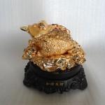 H160G.1 150x150 Thiềm thừ vàng H160G