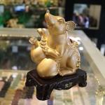 IMG 4425 150x150 Chuột vàng hồ lô H414G