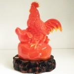 g021a ga do hop hoan gia lac 2 150x150 Gia đình gà đỏ trên đá G021A