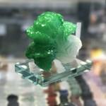 BAP CAI XANH NHO C169A 3.JPG 150x150 Bắp cải xanh nhỏ đế thuỷ tinh  C169A