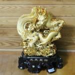 c071a long phung vang 150x150 Long phụng vàng C071A