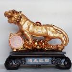 c119a ho vang khung 150x150 Hổ vàng khủng trên núi tiền vàng C119A