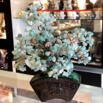 Cay dong linh bonsai chau kieu nhat moi KC119.12 150x150 Cây đông linh thân bonsai chậu kiểu nhật mới (Phước) KC119