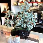 Cay dong linh bonsai chau kieu nhat moi KC119.3 150x150 Cây đông linh thân bonsai chậu kiểu nhật mới (Phước) KC119