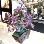 Cay thach anh tim bonsai chau kieu nhat moi KC121.2 150x150 Cây thạch anh tím thân bonsai chậu kiểu nhật mới (Phước) KC121