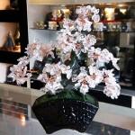 Cay thach anh trang bonsai chau kieu nhat KC118.1.jpg 150x150 Cây thạch anh trắng thân bonsai chậu kiểu nhật mới (Phước)  KC118