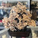 kc104 3.jpg 150x150 Cây thạch anh vàng lớn dáng đại thụ trên chậu có núi đá KC104